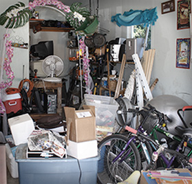 Garage-BEFORE-organization